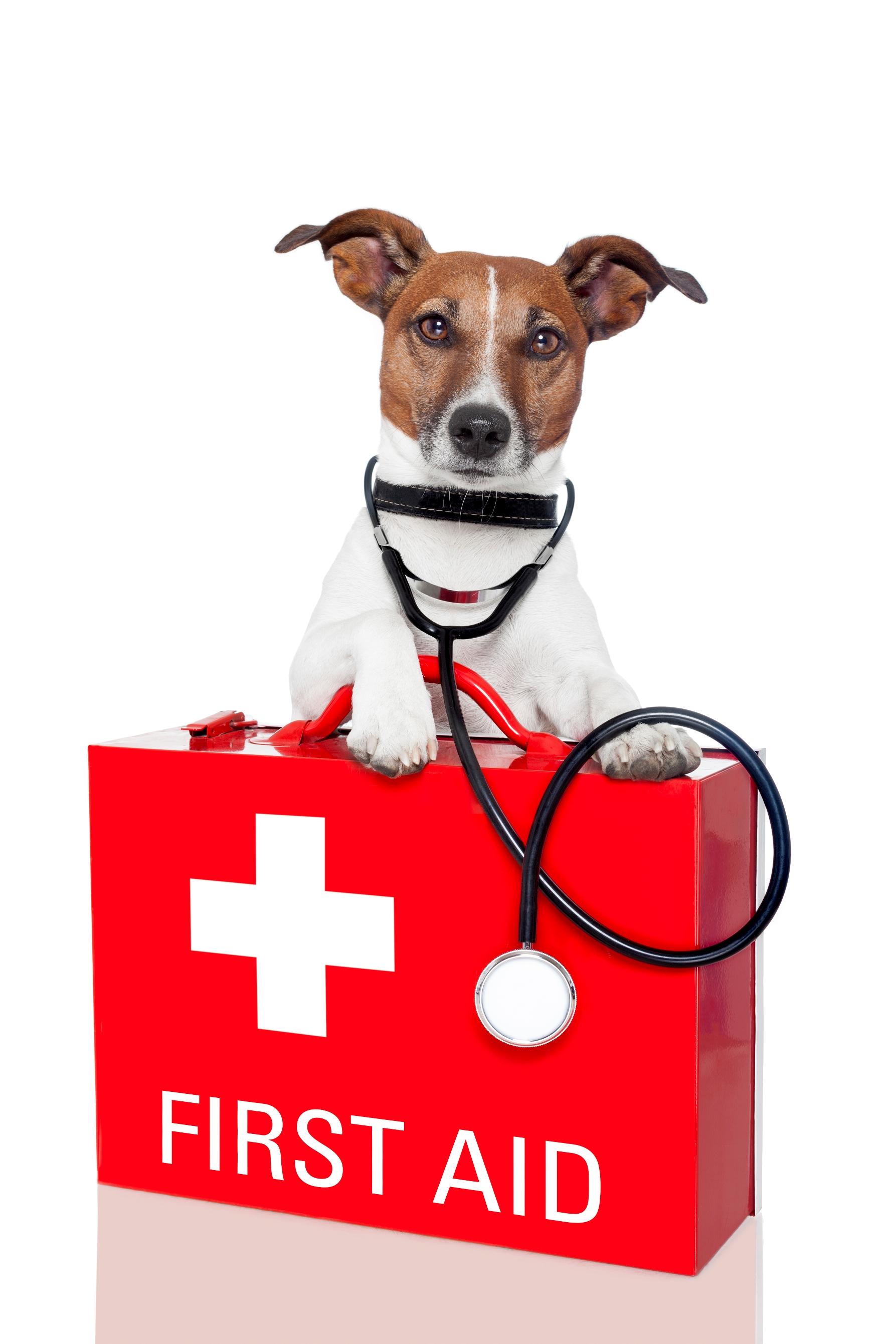 emergenze clinica ippodromo merano